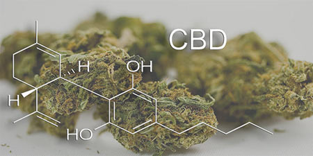 Medical Marijuana for Chronic Pain - NYC Doctors and Pain Management Specialists